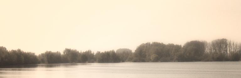 Beroepen gegrond verklaard | Aanleg hoogwatergeul Reevediep daardoor voorlopig van de baan