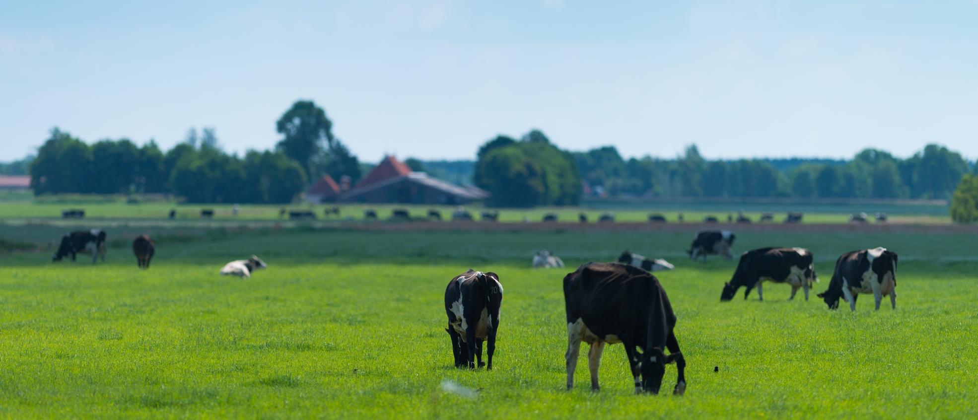 Agrarisch & Grondzaken