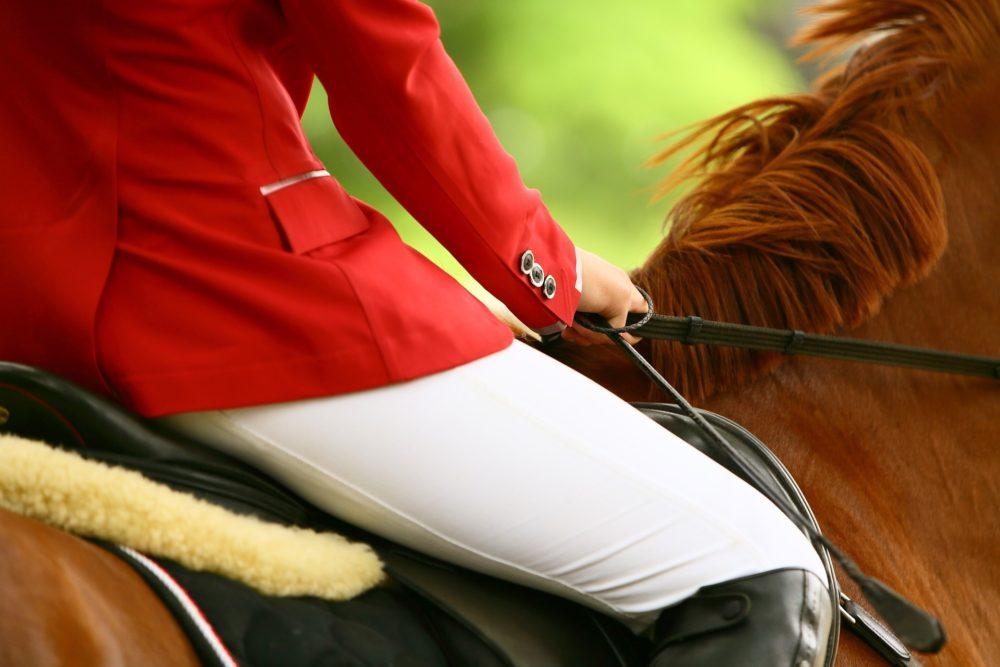 Het ontbinden van de overeenkomst en het verhalen van schade bij de aankoop van een paard of pony met gebreken