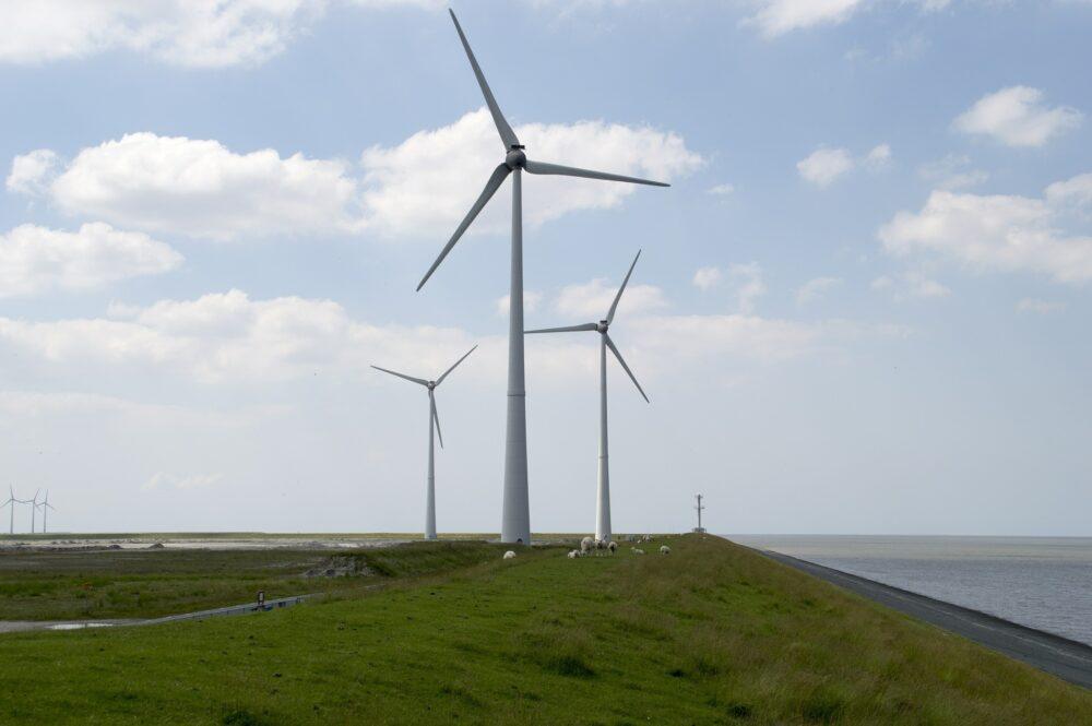 Vergunning verlenen voor de aanleg van een windturbinepark? Vergeet het Europese recht niet!